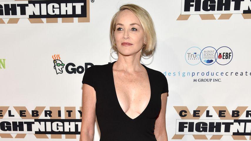 Sharon Stone, Celebrity Fight Night am 18. März 2017