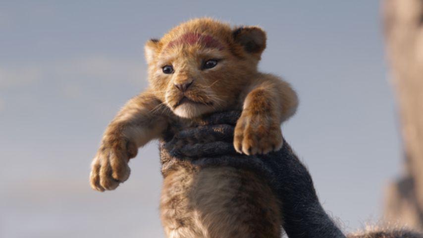 """Simba in der Neuverfilmung """"Der König der Löwen"""""""