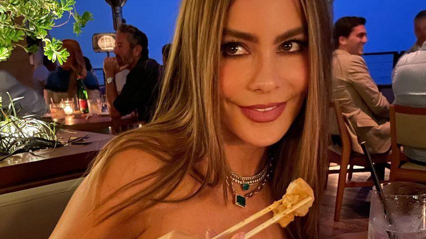 Sofia Vergara, Schauspielerin