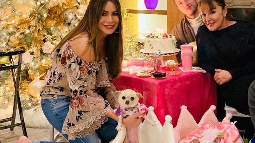 """Modern Family""-Star Sofia Vergara schmeißt Party für Hund"