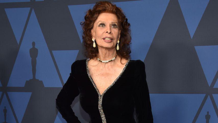 """""""Fühle mich wie 20"""": Sophia Loren (86) ist noch immer topfit"""