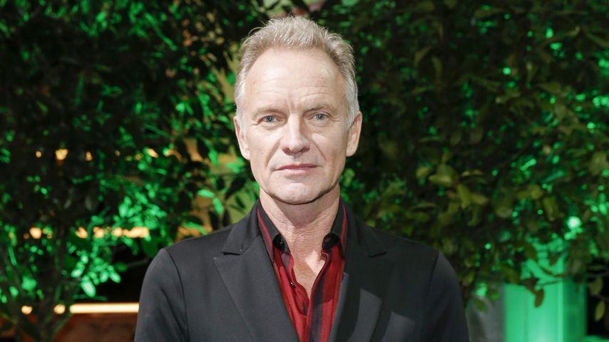 Sting beim International Music Award in Berlin im November 2019