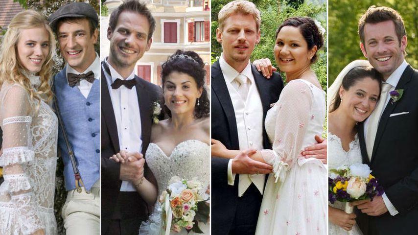 """14 """"Sturm der Liebe""""-Hochzeiten: Welche war die schönste?"""