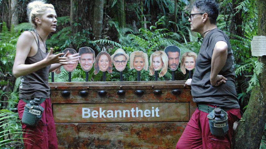 Dschungelcamp: Zickenkrieg um Bekanntheitsgrad