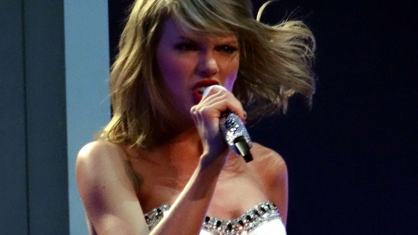 Tierschützer gegen Taylor Swift: Videodreh bedroht Vogelart!