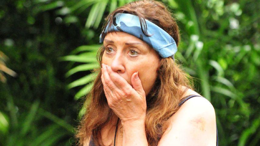 Setzt RTL psychologische Gutachten der Camper gezielt ein?