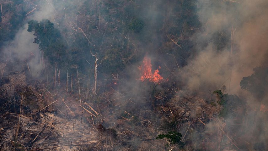 Waldbrand im Amazonas, August 2019