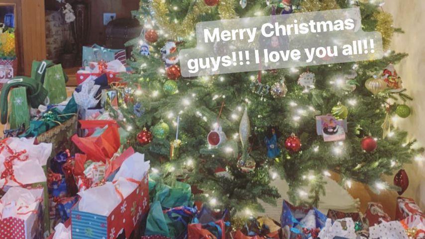 Weihnachtsbaum bei Demi Lovatos Familie