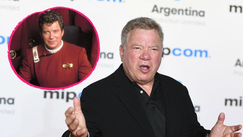 """William Shatner alias Captain Kirk schaut """"Star Trek"""" nicht!"""