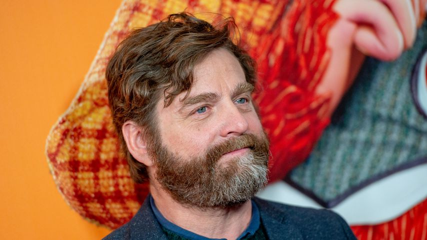Zach Galifianakis im April 2019