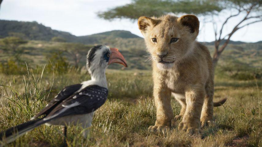 """Zazu und Simba in der Real-Verfilmung von """"Der König der Löwen"""""""