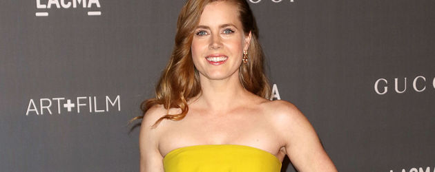 Amy Adams, Hollywood-Star
