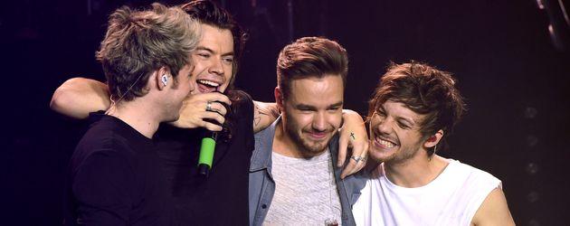 One Direction geben in Sheffield ihr letztes Konzert